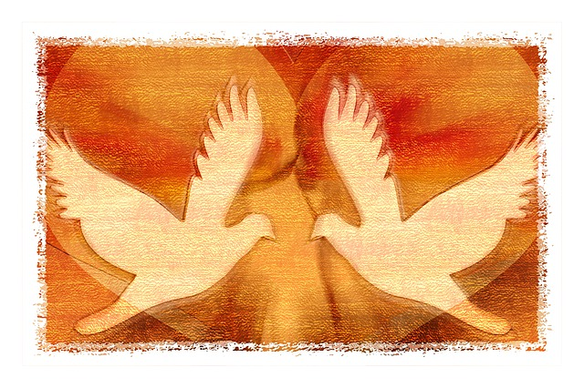 Two peace doves in a heart
