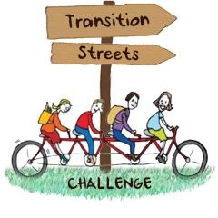 TS Challenge Logo