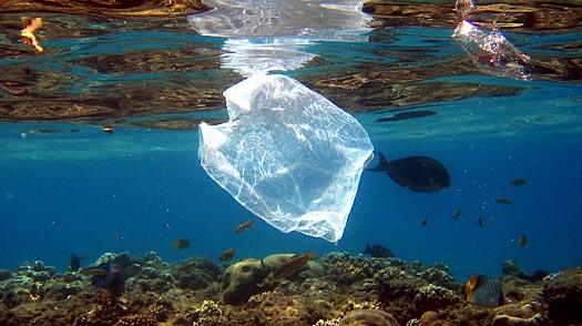 plastics-ocean