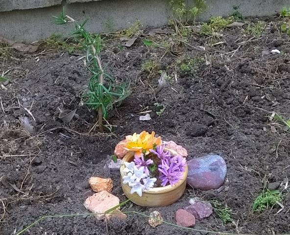 Chicken grave
