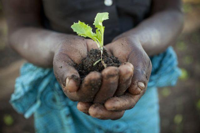 (Photo: Abbie Traylor-Smith, Oxfam)