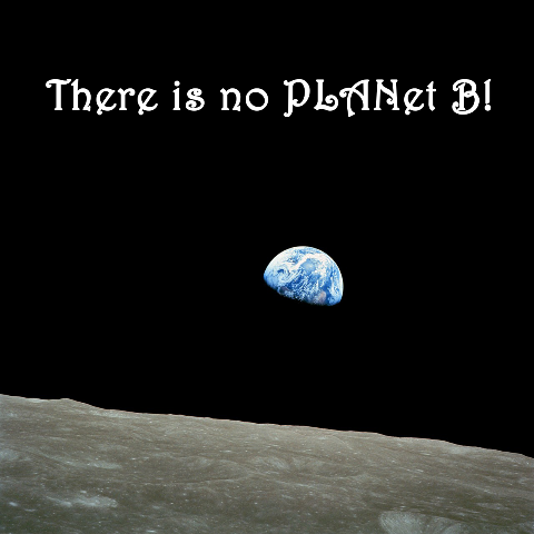 "Picture of earth wiht ""There is no PLANet B!"""