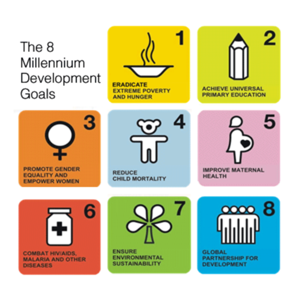 The 8 Millenium Development Goals